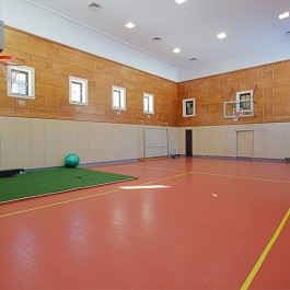 Indoor Sport Amenities