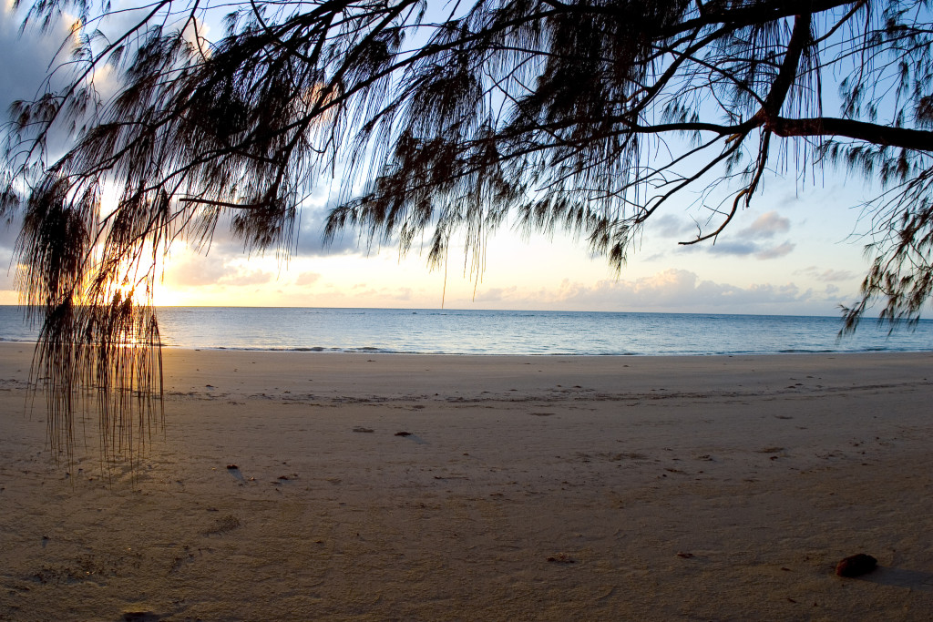 A stock photograph of sunrise on a deserted beach in Cape Tribulation, Northern Queensland, Australia.