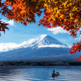 Mt Fuji in autumn view from lake Kawaguchiko. Red maple leaves in Fuji. Autumn foliage around mount Fuji, Japan. View of morning sunrise of Fuji mountain. City around Fuji and lake Kawaguchiko.