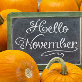 Hello November - white chalk handwriting on a vintage slate blackboard surrounded by pumpkins, Thanksgiving greetings