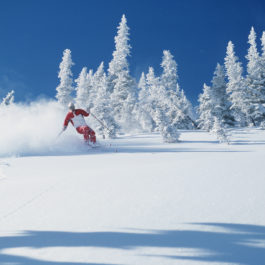 Lone skier riding through powder, British Columbia, Canada