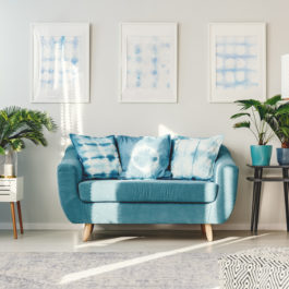 Patterned pillows on blue couch in floral flat interior with plants on cabinets and posters on white wall