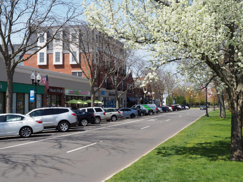 West Hartford CT main street blooming