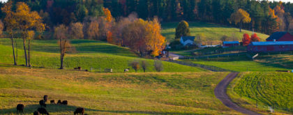 columbia_kinderhook-farm-7